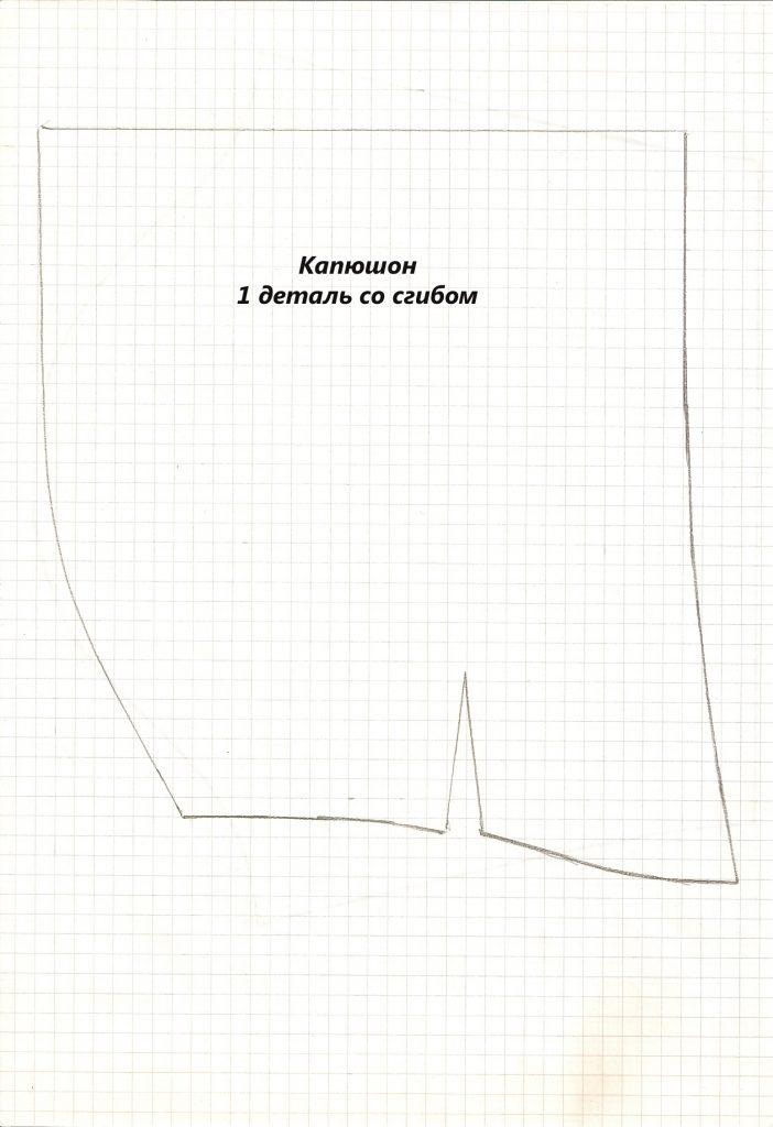 Kapyushon-702x1024