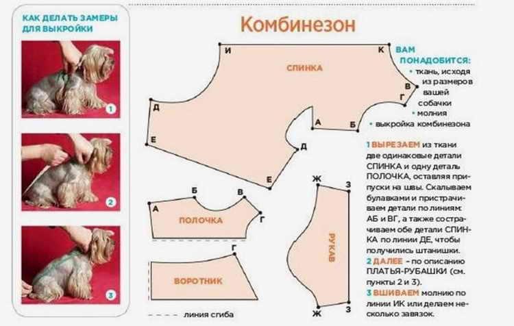 kak-sshit-odezhdu-dlya-sobak-6